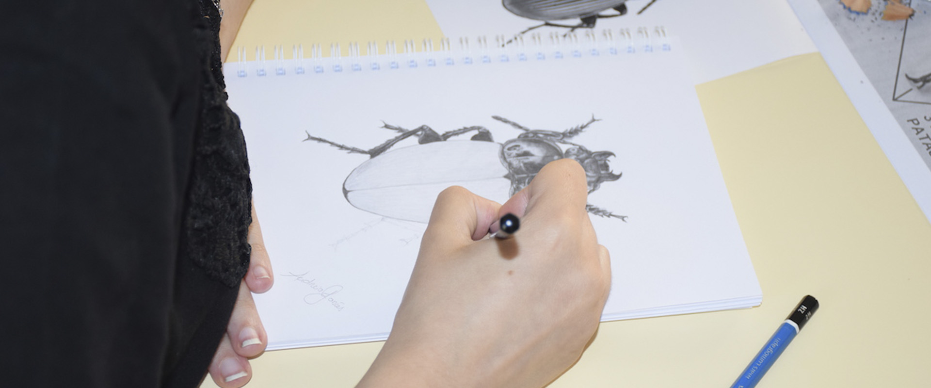 Workshop de desenho de natureza despertou novos talentos